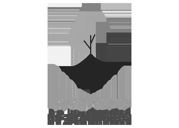 Programa de graduados
