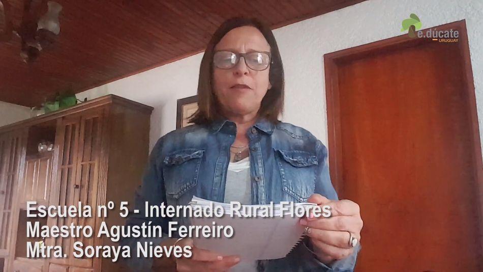 Ver para aprender. Mtra. Soraya Nieves.